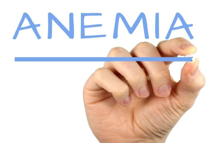 Faktor Penyebab Penyakit Anemia