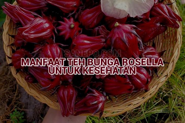 Manfaat Teh Bunga Rosella Bagi Kesehatan