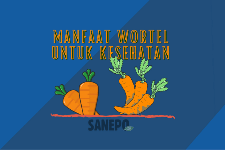 Manfaat Wortel