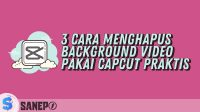 3 Cara Menghapus Background Video Pakai Capcut Praktis