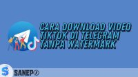 Cara Download Video TikTok di Telegram Tanpa Watermark