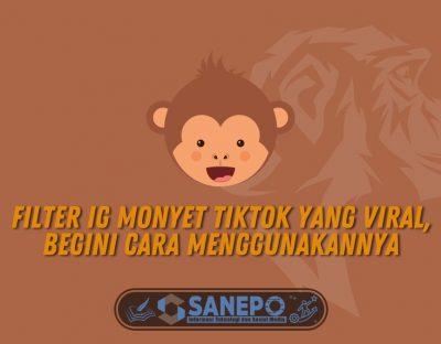Filter IG Monyet TikTok yang Viral, Begini Cara Menggunakannya