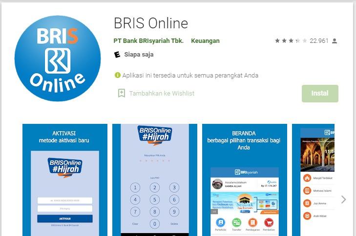 BRIS Online Error