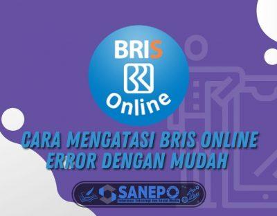Cara Mengatasi BRIS Online Error dengan Mudah