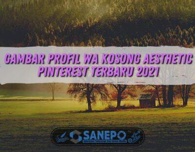 Gambar Profil WA Kosong Aesthetic Pinterest Terbaru 2021