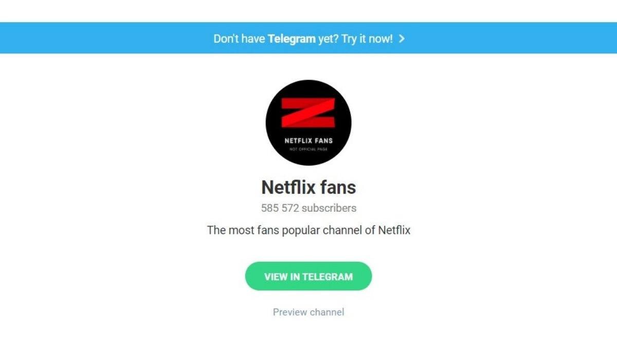 Link Grup Telegram Netflix